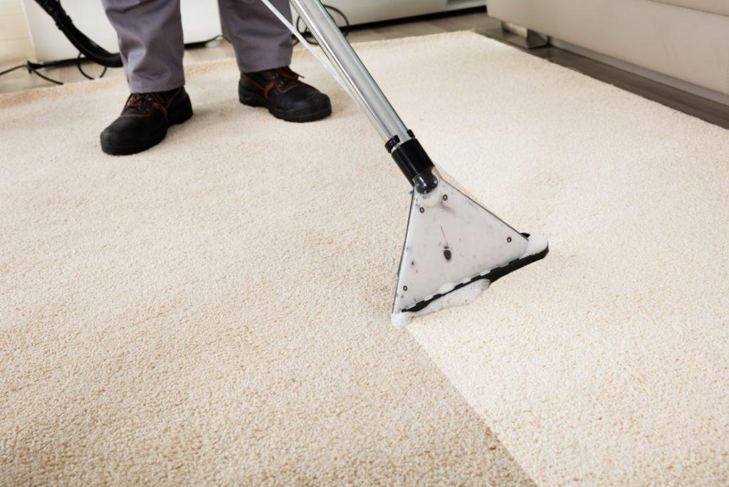 carpet steaming